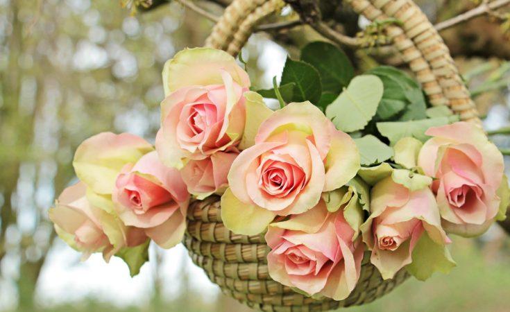 Auguri Per Matrimonio Immagini : Frasi d auguri per il matrimonio pensieri romantici per gli sposi