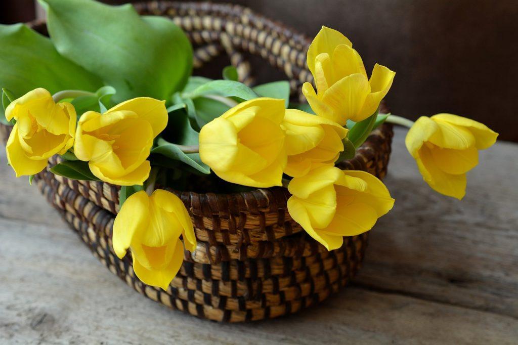 allestimenti nozze con tulipani
